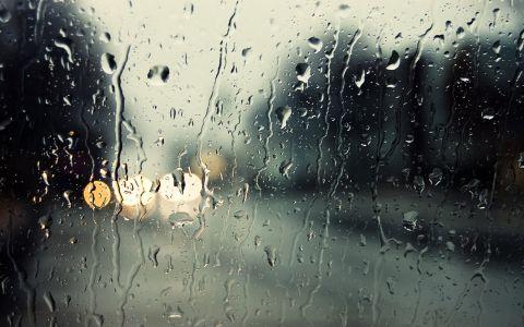 Дъждовнишки